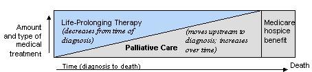 îngrijiri paliative față de terapia de salvare a vieții
